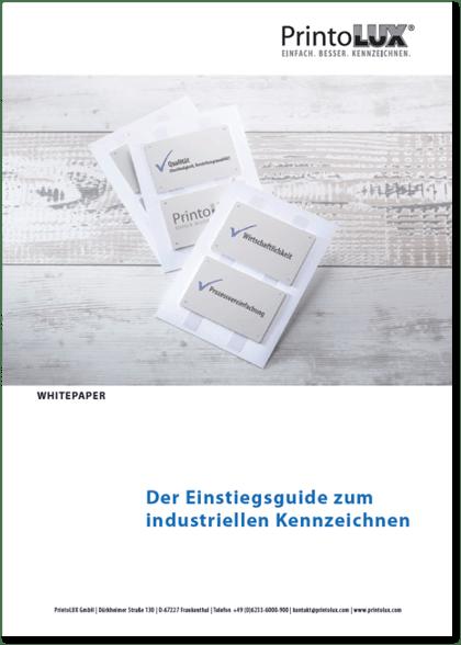 whitepaper-einstiegsguide-2